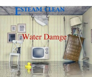 Water Damage Bardstown
